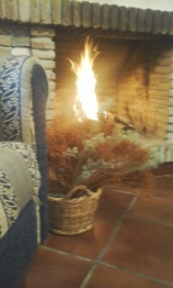 warm by the fire